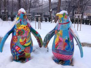 Zimowi mieszkańcy Wrocławia.
