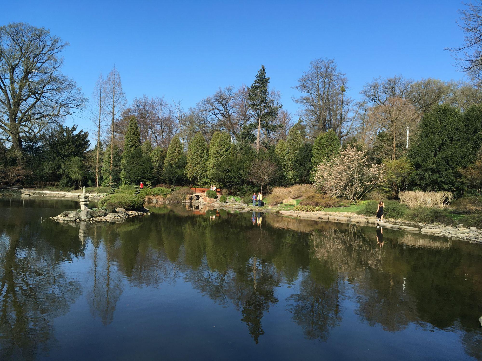 Ogród Japoński.