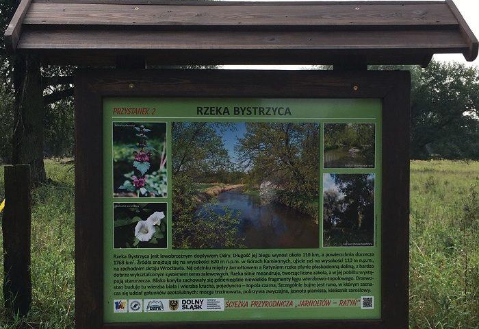 Rzeka Bystrzyca.